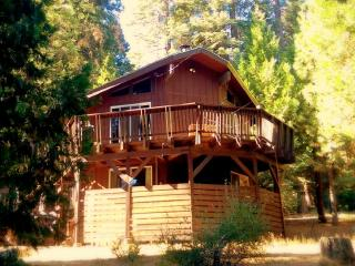 Sierra Cabin Retreat Amongst the Big Trees, Dorrington