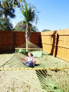 Relax in the 2 person Hammock under the Palm Tree!