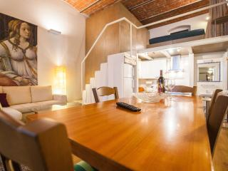 Cool metropolitan lifestyle loft with Wi-Fi and 2 bicycles