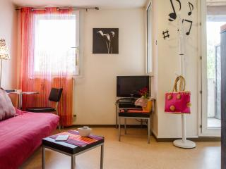 France long term rental in Midi-Pyrenees, Toulouse