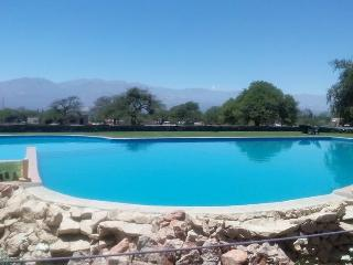 Casa Arbol - Las Vertientes, Cafayate