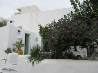 Phedras Lodge traditional village house in Psinthos village - 7 km from beach