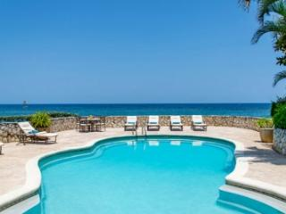 Magnificent 3 Bedroom Villa at Tryall, Hopewell