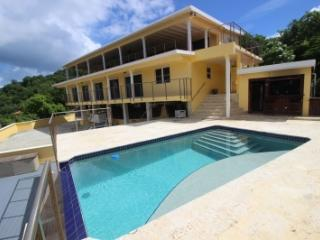 Amazing 7 Bedroom Villa on St Thomas, St. Thomas
