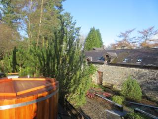 Brandy House Farm - Tractor Shed (eco - Hot Tub), Knighton