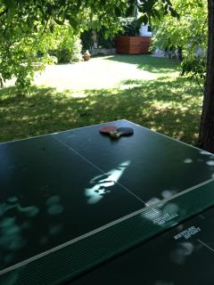 Table tennis, now inside