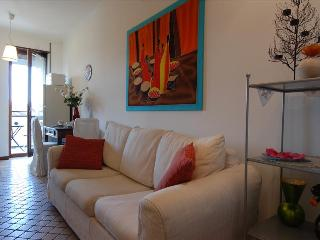 Cozy 1bdr close to Centrale