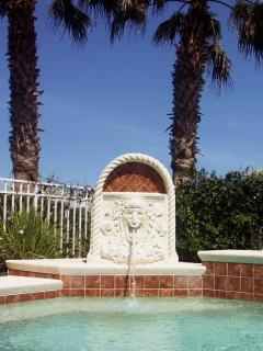 Kid's enjoy the lion's head fountain at your private pool oasis.