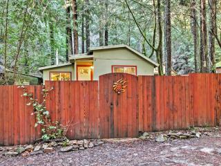 Quiet Guerneville Cottage w/ Redwood Forest Views!