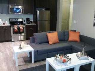 Beautiful Apartment at Medical Center, Houston