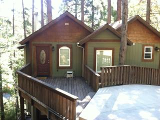Upscale Home in the Trees, Crestline