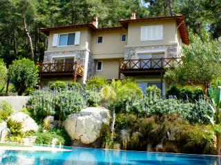 KizilCam Villas C1, Beautiful villa in pine forest, Gocek