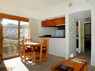 Rockies Condominiums - R2105, Steamboat Springs