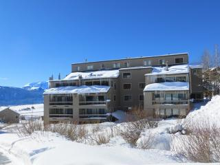 Mountain Edge - 1BR Condo Silver #405 - LLH 60113, Crested Butte