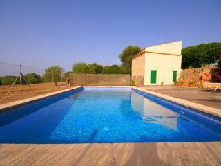 La piscina es un espacio ideal para desconectar. Son 8m x 4m de largo.