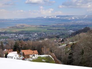 Helle Ferienwohnung mit Blick auf Bodensee, Wolfhalden