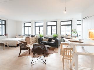 Spacious studio near Zurich city center, Zürich
