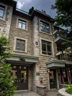 Unique Oasis in Ville Marie Montréal, Where East meets West the core of multicultural activities