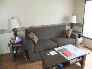 living room, pull out couch