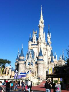 Cinderella's Castle at Magic Kingdom. Arrive Early and stay late!