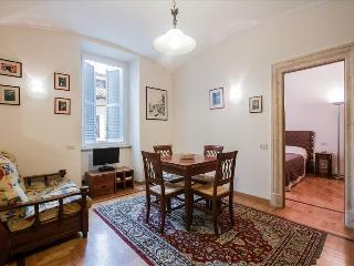 Sunny 1bdr apt close to S. Peter's, Rom