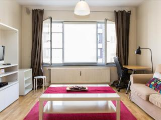 Comfy 1bdr in city centre, Ixelles