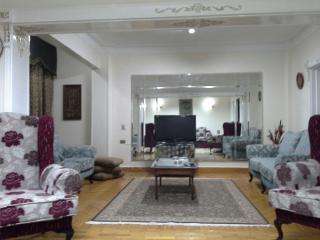 Cairo Furnished Apartment, Mohandesen Zamalak Club, Caïro