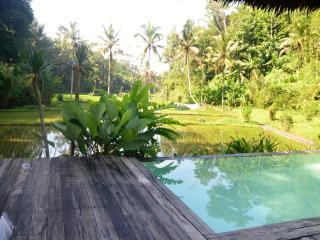 Luxurious villa, STAIRWAY TO HEAVEN, Ubud area!, Peliatan