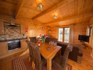 Wheelchair accessible log cabin on the Somerset Levels (Barn Owl)