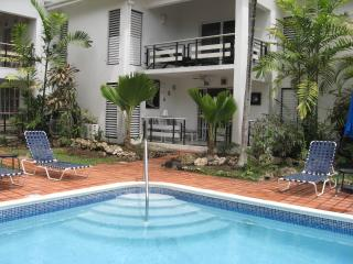 Palm Beach Condominium - beachfront - Holetown