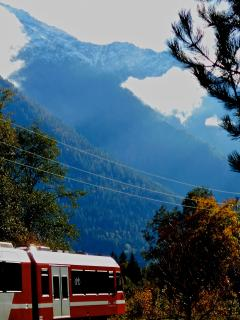 Red ski train. Efficient and takes you all the way through the chamonix valley and town centre.