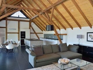 Rebenhaus-Loft im idyllischen Rebland