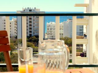 Carvalhal II - 300 meters from the beach