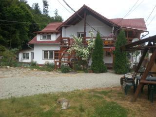 Pensiunea BALEA,Transfagarasan Road,wooden area., Cartisoara