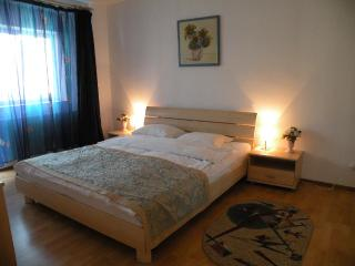 Awesome view on Calea Victoriei, 1 bedroom apart., Bukarest