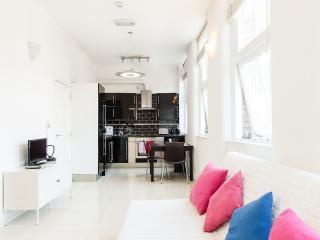 Luxury Studio Door Step Of Central London