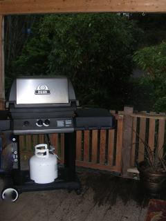 BBQ in covered area