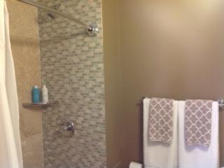 Second full bathroom with shower