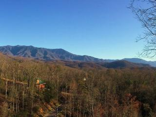 Geaux Bear Naked Awesome Mountain Views, Gatlinburg
