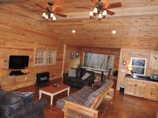living room with 42 in hd tv, queen futon and gas stove. Great place to relax