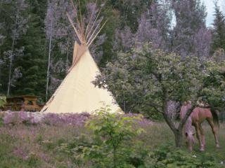 Tipi lodge