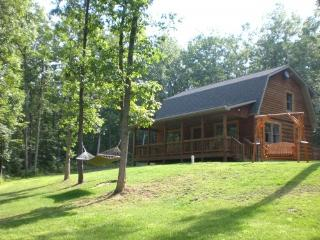Wild Vines Cabin Vacation Home Rentals, Romantic, Luray