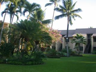 FABULOUS FALL RATES -ONLY $109/NT! Affordable Kihei Condo, Steps to Beach