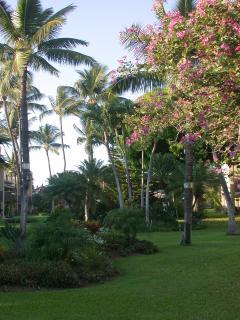 View of tropical grounds from front door/bedroom