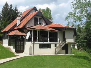 Serbia holiday rentals in Central Serbia, Vlasinsko Jezero