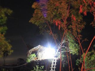 rumah pohon kamar kauh