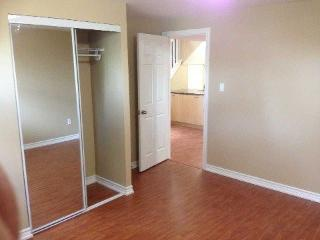 Beautiful Spacious Basement for Rent