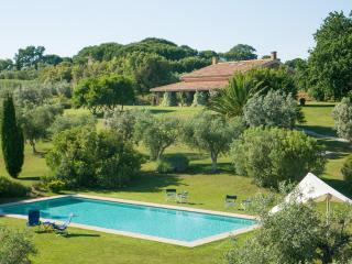 Villa Magliano - Wonderful villa with dependance in the Maremma area