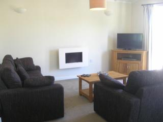 2 Bedroom Deluxe Lodge at Lazy Otter, Ely