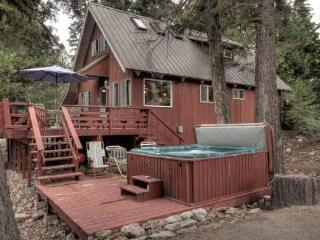 Pfeiffer Dog Friendly Cabin - Hot Tub, Lake Tahoe (California)